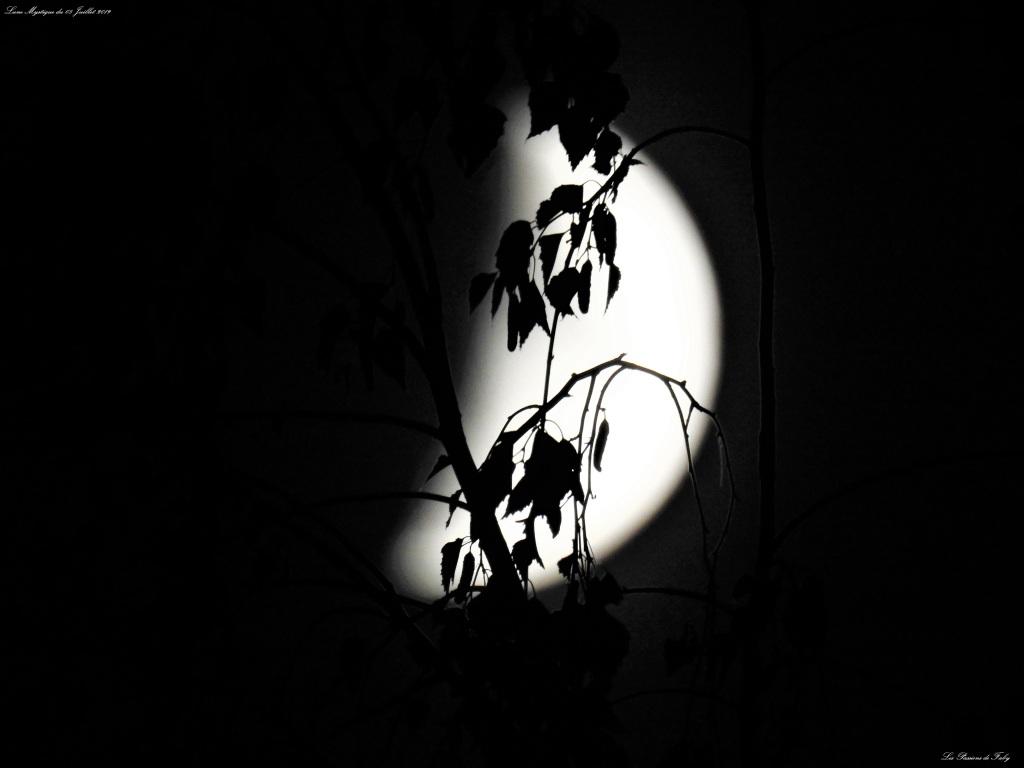 Lune Mystique du 08/07/19 les-passions-de-faby.com